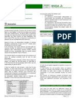 Agricultural Commodity Technical Cards from BNDA_Mais_0.pdf