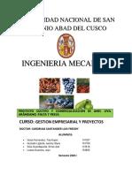 Proyecto cultivo de anis, uva, palto, arandano y fresa en Curahuasi