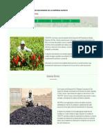 RECOPILACION DE LA INFORMACION SECUNDARIA DE LA EMPRESA ASOVITA.docx