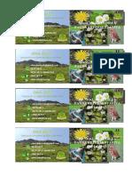 flora y fauna lomas vmt2 (2)