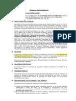TDR - Seguridad (1)