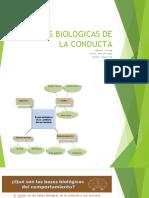 bases  biolde la cta.pdf