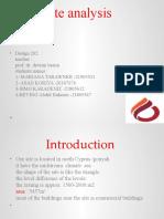 202 analysis site GROUP WORK powerpoint.pptx