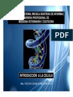 BIOCEMOL 1.pdf