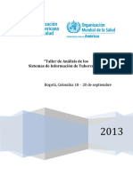 Informe-Taller-Sistemas-Informacion-Colombia-2013.pdf