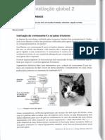 11 Teste avaliação global 2.pdf