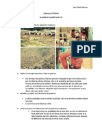 Solución ACTIVIDAD sociales..docx