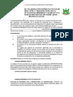 CONVENIO DE COLABORACIÓN ENTRE FACULTAD DE INGENIERIA CIVIL Y ARQUITECTURA DE LA UNIVERSIDAD NACIONAL HERMILIO VALDIZAN [727]