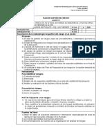 01-modelo-plan-de-gestion-del-riesgo
