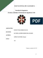 BOCATOMA DE FONDO.docx