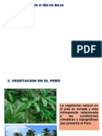 VEGETACION S 5