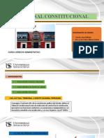 DIAPOSITIVAS TRIBUNAL CONSTITUCIONAL PAF
