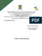 document-2012-10-23-13471626-0-caiet-sarcini-internet-scoala.doc
