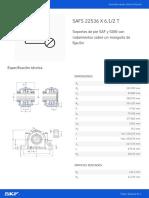 SAFS 22536 X 6.1_2 T_20201021