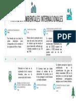TRATADOS AMBIENTALES LINEA DE TIEMPO