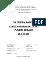 Enfermeria- Soapie-cuadro Analitico y Plan de Cuidado- 29-10-2020