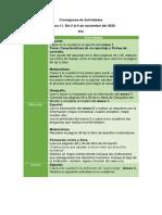 Cronograma de actividades semana 11 (1).pdf