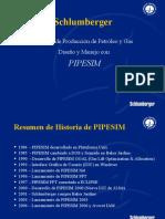 PRESENTACION PIPESIM