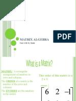 Matrix algebra ib1