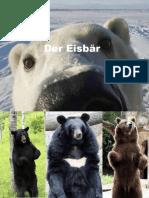 Eisbär.pptx
