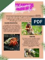 INQUILINISMO.pdf