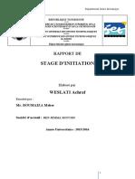 rapport-final-bmw
