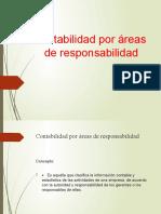AREAS DE RESPONSABILIDAD