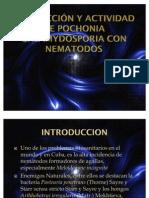 Interacción y actividad de Pochonia chlamydosporia con nematodos