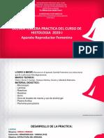 Practica 13 A REPRODUCTOR   FEMENINO (1).pdf