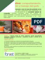Etología-felina-1819abr20
