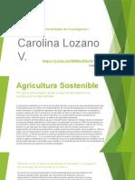 Fase5_PropuestaFinal_CarolinaLozano..docx