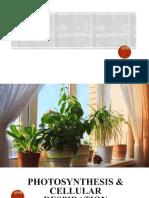 Photosynthesis___Cellular_Respiration_(module_5).ppt