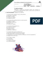 evaluacion sistema CIRCULATORIO 7