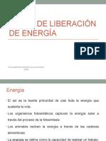 21 RUTAS DE LIBERACION DE ENERGIA (1).pptx