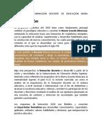 PROGRAMA DE FORMACIÓN DOCENTE DE EDUCACIÓN MEDIA SUPERIOR