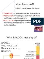 Blood and Circulation Bridge Lesson
