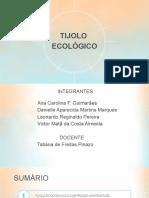 Tijolo_Ecológico_Final (1).pptx