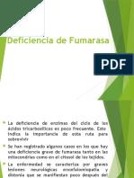 239591632 Caso 4 Deficiencia de Fumarasa