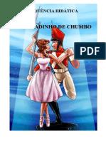 sequenciadidaticasoldadodechumbo-170811110837