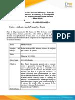 Anexo 2 – Revisión bibliográfica (1).docx