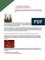 10_idei_de_afaceri.docx