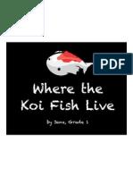 Where the Koi Fish Live