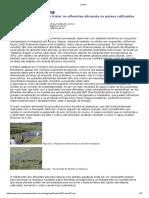 Revista_Lemna.pdf