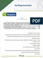 04_Teorias_Organizacionais.pdf