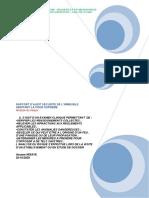 RAPPORT D'AUDIT SECURITE IMMEUBLES COUR SUPREME.pdf