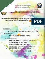 ACTIVIDAD - PERITAJE CONTABLE JUDICIAL.docx
