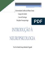 553043_Neuropsicologia - origens e definição.pdf