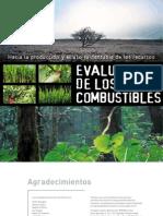Assessing_Biofuels_Summary_SPA