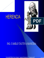 Presentación Herencia (1)