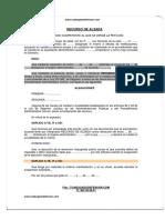 Modelo-de-Recurso-Alzada